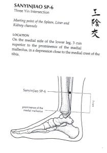 SP6-San-Yin-Jiao-001
