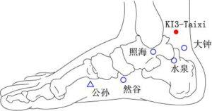 Acupuncture point kidney 3