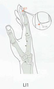 LI1 acupuncture point